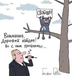 medvedev-cat-dorofei-cartoon