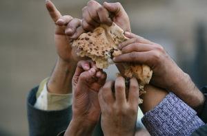 bread_food